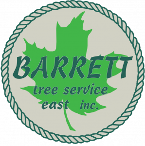 barrett-tree-service